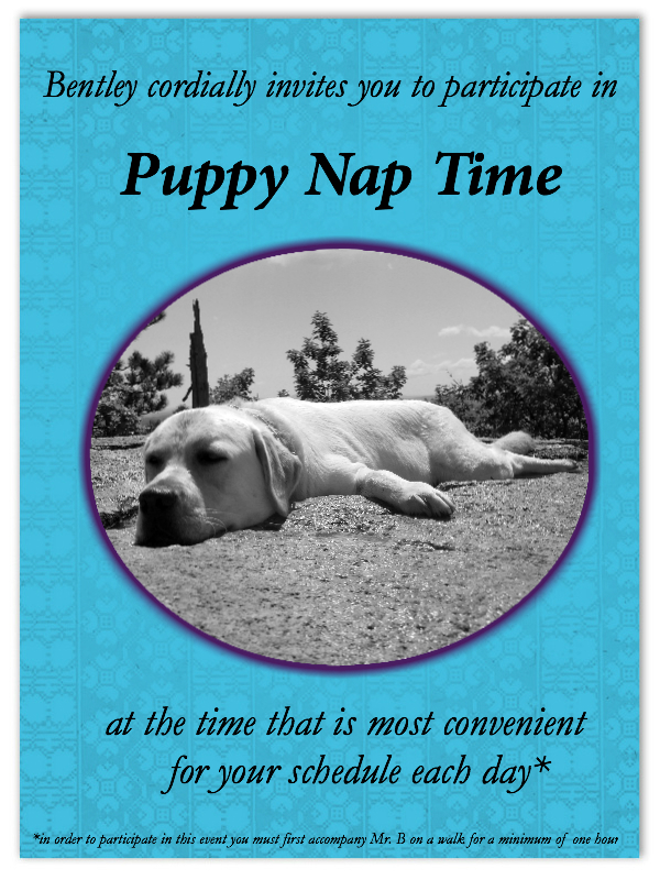 Puppy Nap Time inviation-better3